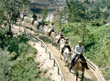 Pack Mules Passing Rivers Of America