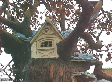 Close Up Of Tree House