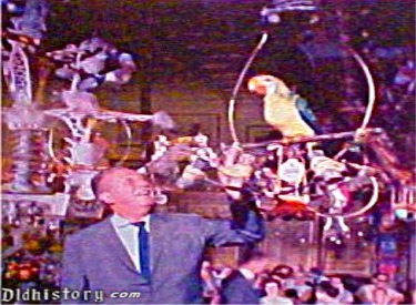 Walt With Tiki Birds In Pre Show