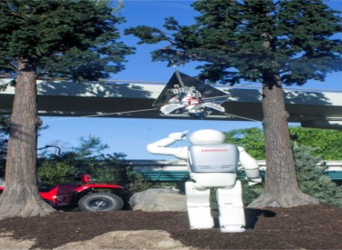 ASIMO Rescuing His Friend Bird From A Kite