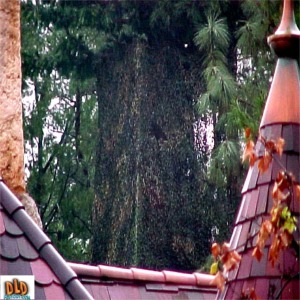 Close Up Of Tinkerbell Landing Point Disguised As A Tree