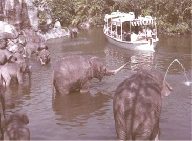 Elephant Bathing Pool