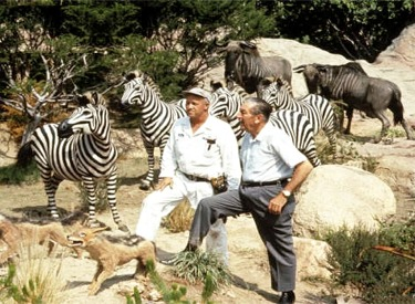 Walt Disney And Zebras