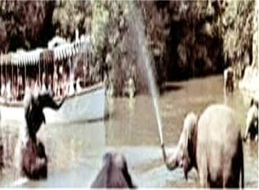 Jungle Boat Entering Elephant Bathing Pool