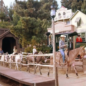 Pack Mules Returning To Rainbow Ridge