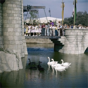Kids On Drawbridge Watching Black And White Swans