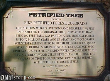 Petrified Tree Story Sign