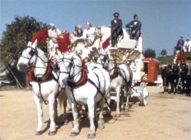 Plumed White Horses Pull The Famous Swan Band Wagon